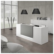 Straight reception desk Jana white/anthracite W 246 cm