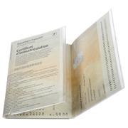Sachet de 10 étuis de protection pour nouvelle carte grise 3 volets PVC lisse 20/100e