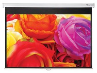 Optoma DS-1095PMG+ - projection screen - 95