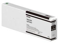 Epson T804700 - lichtzwart - origineel - inktcartridge (C13T804700)